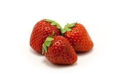 juicy φράουλες τρία ανασκόπησης λευκό Στοκ εικόνες με δικαίωμα ελεύθερης χρήσης