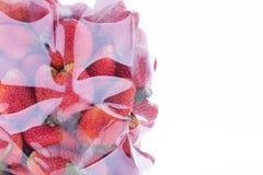 Juicy φρούτα φραουλών στη συσκευασία πλαστικών τσαντών Στοκ Εικόνες