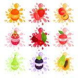 Juicy ώριμα φρούτα που καταβρέχουν το σύνολο ζωηρόχρωμων απεικονίσεων Στοκ Εικόνες
