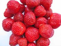 juicy ώριμες φράουλες Στοκ εικόνες με δικαίωμα ελεύθερης χρήσης