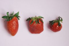 Juicy ώριμη φράουλα σε ένα ελαφρύ υπόβαθρο στοκ φωτογραφία με δικαίωμα ελεύθερης χρήσης