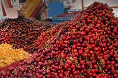 Διαφορετικά γλυκά κεράσια ειδών στην αγορά Juicy φρούτα πώλησης στην πόλη Βάρνα, Βουλγαρία κατάλληλη διατροφή, βιταμίνες, υγιή τρ στοκ φωτογραφία με δικαίωμα ελεύθερης χρήσης