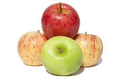 Juicy Apples. A selection of apples on a white background stock image