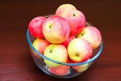 Juicy apples Stock Photography