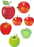 Juicy apples. Seven different juicy apples green and red Royalty Free Illustration