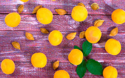 Juicy apricots. And bones from him on a wooden background Stock Photography