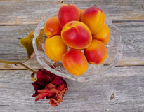Juicy apricots Stock Photos