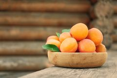 Juicy apricots in bowl on table Stock Photo