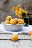 Juicy apricots Royalty Free Stock Photography
