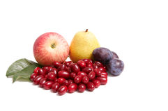 Juicy autumn fruits on a white. Stock Photography