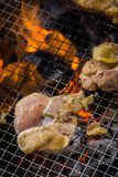 A juicy barbecued cuisine. A food photo of barbecued or grilled cuisine royalty free stock image