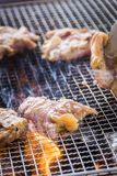 A juicy barbecued cuisine. A food photo of barbecued or grilled cuisine royalty free stock photos