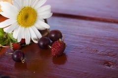 Juicy berries. Beautiful juicy berry, and chamomile. Macro photo Stock Images