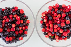 Juicy berries in a bowl. Blueberry and wild strawberry. Stock Photos