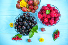 Juicy berries in glass bowls Royalty Free Stock Image