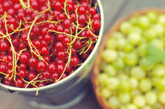 Juicy berries of red currant and berry of a gooseberry closeup. Royalty Free Stock Image