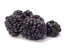 Juicy Blackberries Royalty Free Stock Image