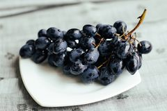 Juicy blue grapes royalty free stock images