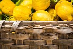 Juicy bright lemons in a basket Stock Photo