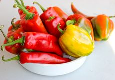 Lots of red peppers. Juicy, bright peppers in the dish stock image