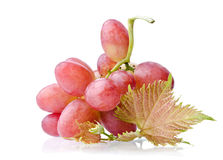 Juicy bunch of grapes Stock Images
