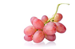 Juicy bunch of grapes Stock Photography