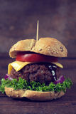 Juicy burger Royalty Free Stock Photo