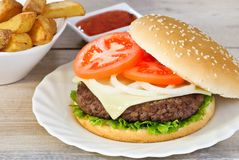 Juicy Burger & Fries Stock Image