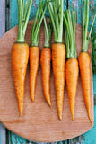 Juicy carrots, top view Royalty Free Stock Image