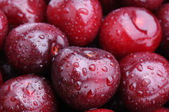 Juicy cherries Stock Images