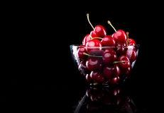 Juicy cherries in a bowl Royalty Free Stock Photos