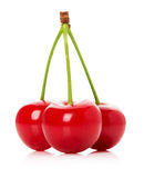 Juicy cherries isolated on the white background Royalty Free Stock Images