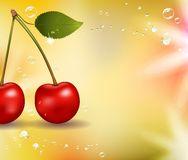 Juicy cherry background Royalty Free Stock Photo
