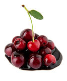 Juicy cherry in a chocolate Stock Photography