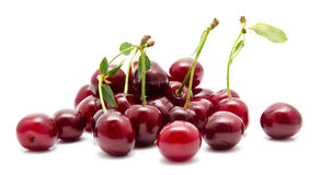 Juicy cherry with leaf isolated Stock Image