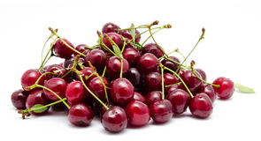 Juicy cherry with leaf isolated Royalty Free Stock Images