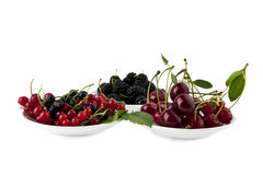 Juicy cherry, mulberry and currants Royalty Free Stock Photography