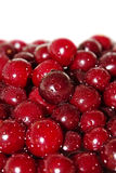 Juicy cherry in water Stock Photo