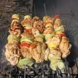 Juicy chicken skewers with vegetables Royalty Free Stock Photo