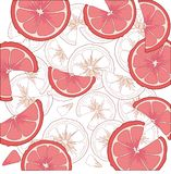 Juicy citrus fruit. Bright citrus design element. Stock Photos