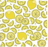 Juicy citrus fruit. Bright citrus design element. Stock Photography