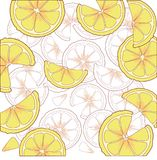 Juicy citrus fruit. Bright citrus design element. Stock Image