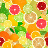 Juicy Citrus fruits set. Bright and vivid. Yellow, orange, red, green. Whole and slices Stock Images