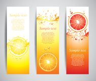 Juicy citrus splashes banners, vector Stock Image