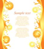 Juicy citrus splashes frame background Royalty Free Stock Images