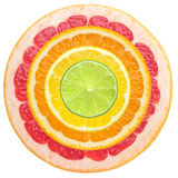 Juicy citrus Stock Photos