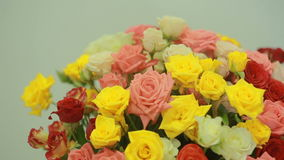 Juicy, colorful bouquet of pink, yellow, red and orange roses, close-up stock video footage
