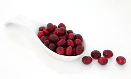 Juicy Cranberry Fruit Royalty Free Stock Image