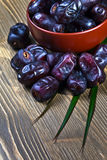 Juicy dates Royalty Free Stock Images