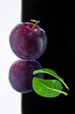 Juicy and delicious plum. With leaves on a dark background Royalty Free Stock Photography
